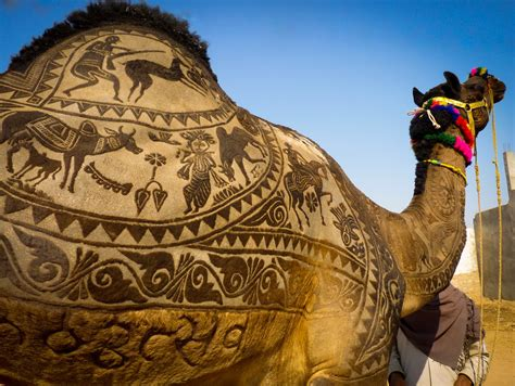 Pushkar Camel Fair 2017  Celebrate Pushkar Camel Fair