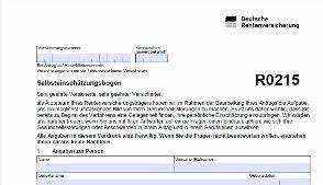 Erwerbsminderungsrente Berechnen : r0210 r0215 r210 r215 selbsteinsch tzung hilfe zum ausf llen erwerbsminderung ~ Themetempest.com Abrechnung