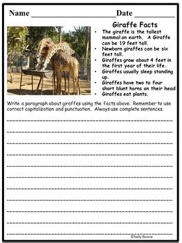 writing prompts animals expositorywriting  sally boone tpt