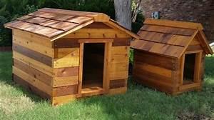 cedar dog house hambone and dogs pet treats With carms dog house