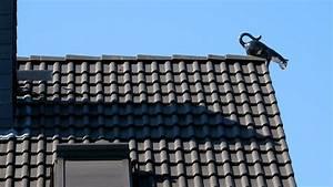 Gewächshaus Sturmsicher Machen : dachschmuck max vogel bedachung ~ Frokenaadalensverden.com Haus und Dekorationen
