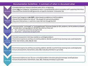 Documentation Guidelines Job Aide