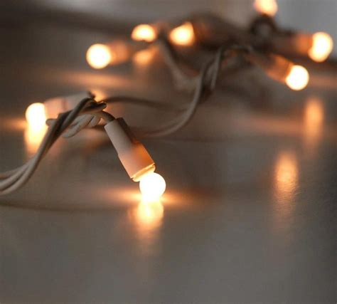 Mini Lights For Crafts by String Lights Ps 187 Gala Enchanted Forest Globe