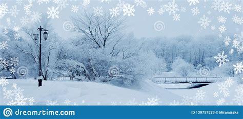 Winter Background Landscape Winter Trees In Wonderland