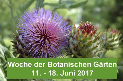 Botanischer Garten Fribourg öffnungszeiten by Willkommen Im Botanischen Garten Der Universit 228 T Freiburg