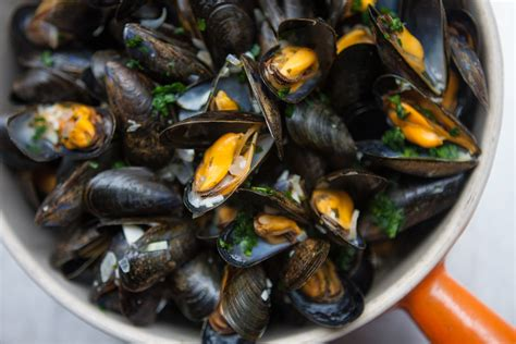 moules cuisine moules frites mussels and fries