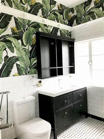 Bathroom Palm Tropical Kingdom Jungle Bathrooms Milton