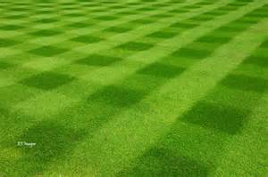 Lawn Mowing Grass Patterns