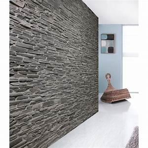 Plaquette De Parement Exterieur Pas Cher : pierres de parement fashion designs ~ Dailycaller-alerts.com Idées de Décoration