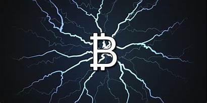 Lightning Network Bitcoin Market Slump Dominate Grows