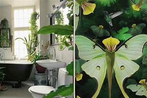 Plante Verte Salle De Bain : la tendance d co urban jungle ~ Melissatoandfro.com Idées de Décoration