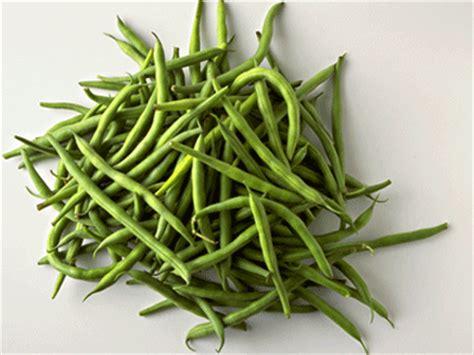cuisiner haricots verts surgel comment cuisiner les haricots verts 28 images comment