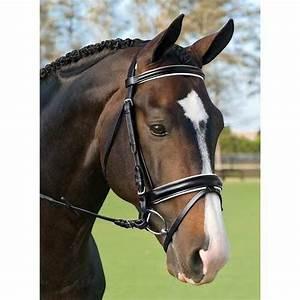 178 best Bridle - Huntseat/Dressage.... images on ...