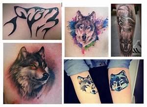 Loup Tatouage Signification : le loup roar your tattoo ~ Dallasstarsshop.com Idées de Décoration