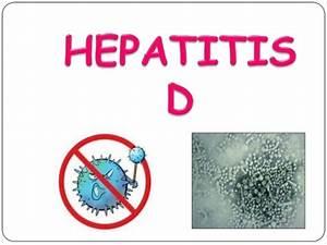 Medifit Biologi... Hepatitis D