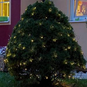 Aussen Hauswand Deko : sch ne dekoidee lichternetz auf einem busch im garten f r die weihnachtsbeleuchtung ~ Sanjose-hotels-ca.com Haus und Dekorationen