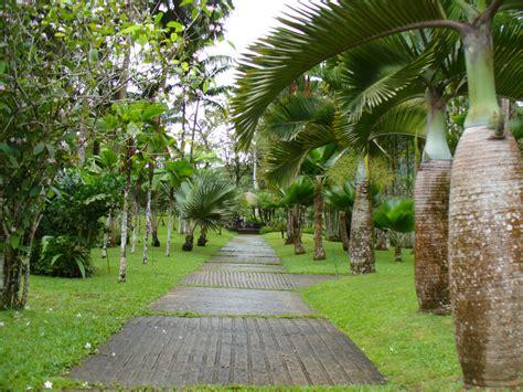 bureau valley martinique les jardins en marqueyssac garden in dordogne