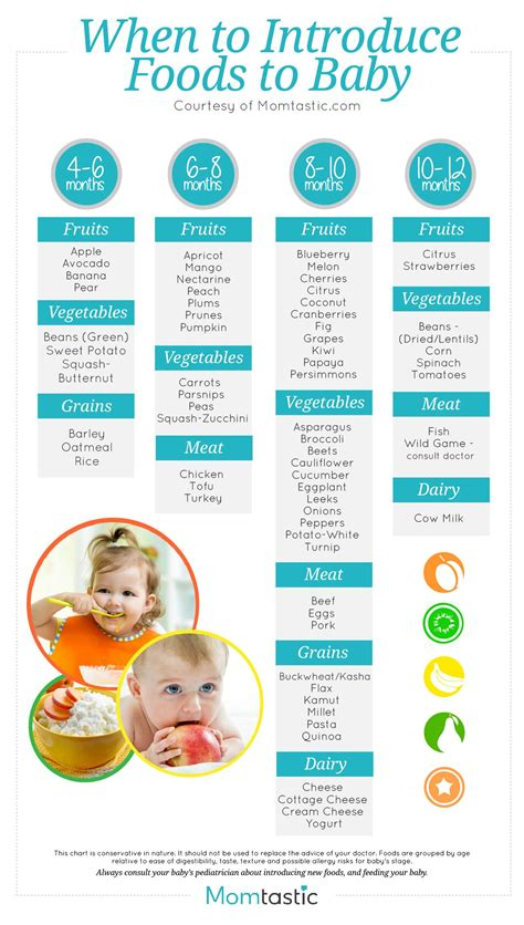 Introducing Solids A Month By Month Schedule Free