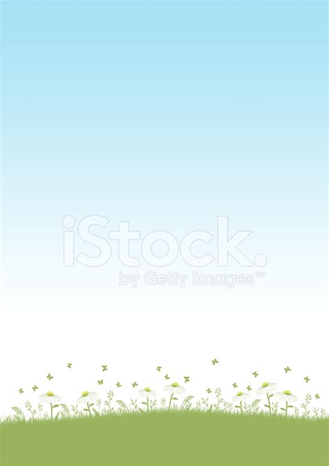 Type Of Christmas Trees by Herbal Field A4 Background Stock Vector Freeimages Com