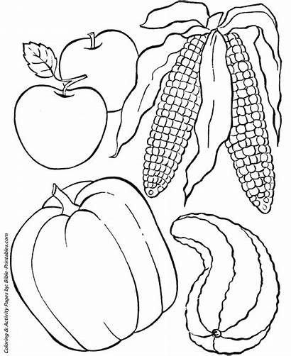 Coloring Thanksgiving Pages Dinner Sheets Harvest Feast