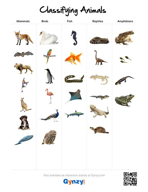 mammals birds fish reptiles or hibians https r