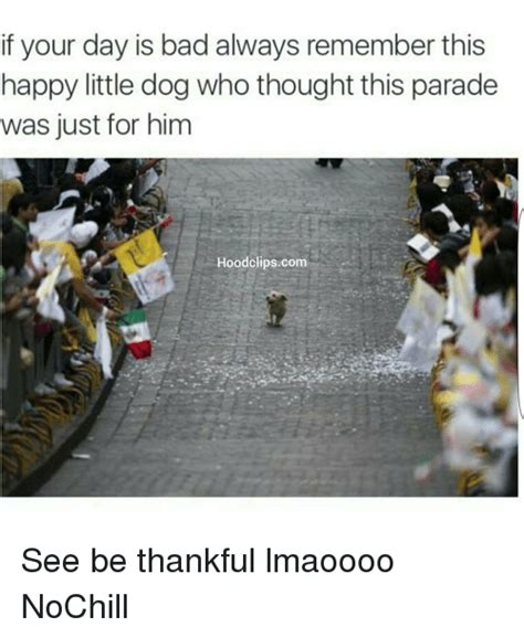 Parade Meme - if your day is bad always remember this happy little dog who thought this parade was just for