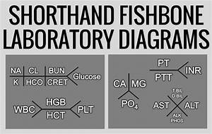 Shorthand Fishbone Laboratory Diagrams