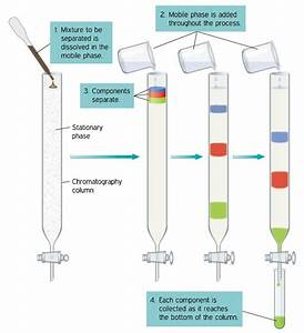 Column Chromatography Definition  Principles  Procedure