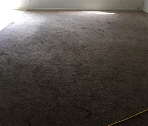Carpet Cleaning St Augustine Fl   Oxi Fresh Carpet Cleaning   St. Augustine, FL   OxiFresh