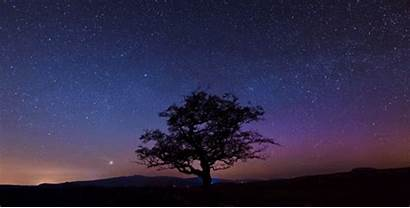 Gifs Night Forest Nature Starry Peace Around