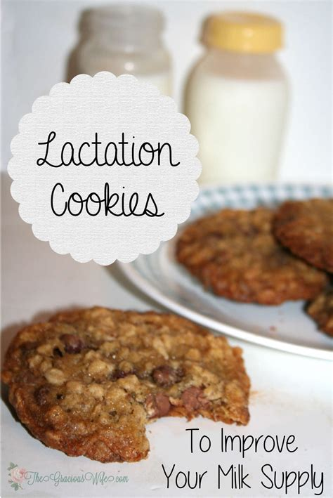 Lactation Cookies The Gracious Wife