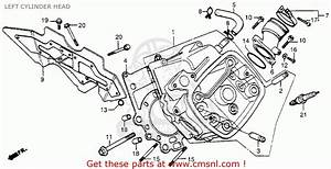 1979 Honda Cx500 Engine Diagram  Honda  Auto Wiring Diagram
