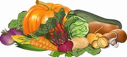 Vegetables Harvest Clip Fall Garden Fruit Vegetable