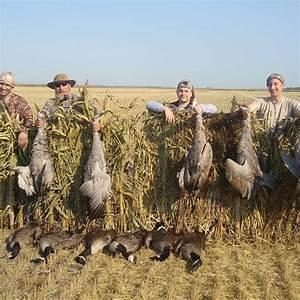 Goose Hunting In North Dakota