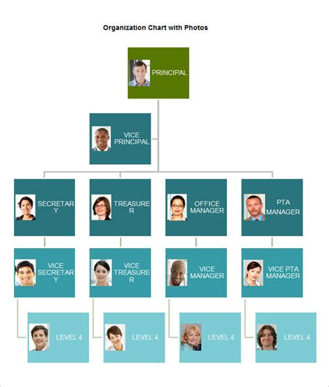 organizational chart template   word excel