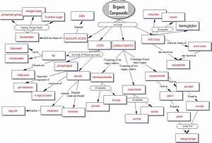 Organic Compounds Concept Map Answers