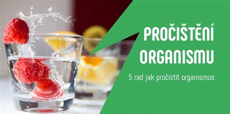 Jak na správné pročištění organismu - Jakbýtfit.cz