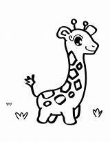 Giraffe Coloring Printable Cartoon Drawings Animal Template Outline sketch template
