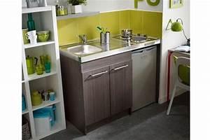 Cuisine Studio Ikea : mini cuisine ultra compacte cuisine pour studio ~ Melissatoandfro.com Idées de Décoration