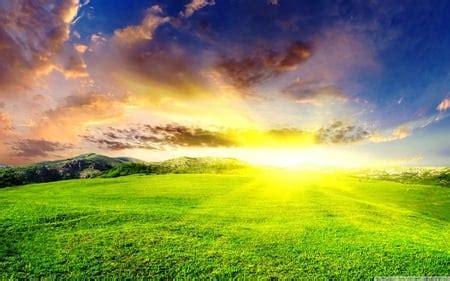 Good Morning Sunshine - Fields & Nature Background ...