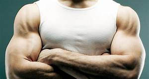 Forearm Exercises  The 20 Best Forearm Workouts Of All Time