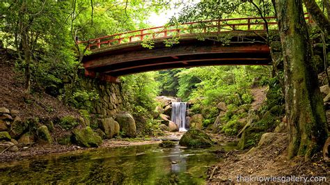 waterfall  bridge  japan forest   water