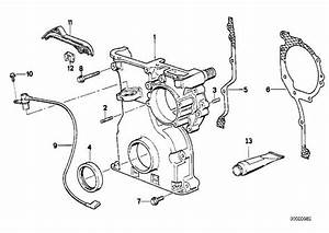 2005 Bmw 525i Belt Diagram  2005  Free Engine Image For