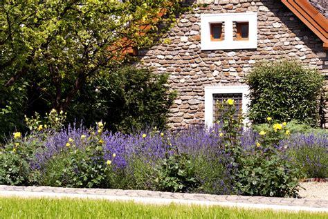 Garten Ideen Mit Lavendel by Vorgarten Mit Lavendel Gestalten 187 Sch 246 Ne Ideen