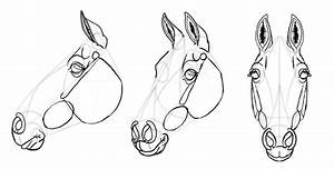 Simple Horse Head Drawing At Getdrawings