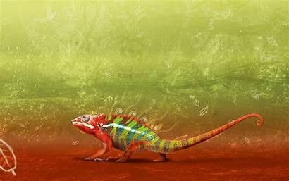 Chameleon Change Background Wallpapers Lizard Wiki Hdwallsource