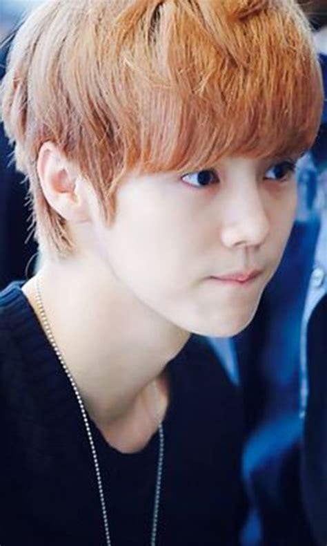exo luhan cute wallpaper apk   android