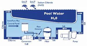 Pool Salt Systems  Mythbusters