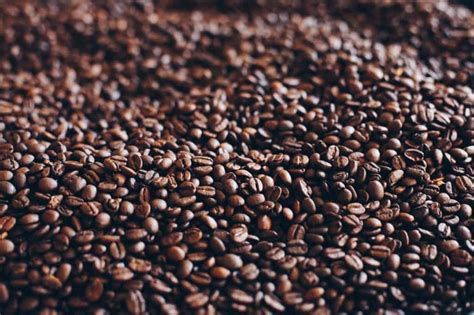 What are oily coffee beans and what difference does it make in your coffee? Oily Coffee Beans: The Good, The Bad, and The Ugly