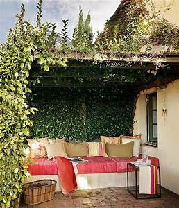 Plantes Grimpantes Pot Pour Terrasse : plantes d ext rieur pour terrasse de site g nial le les ~ Premium-room.com Idées de Décoration